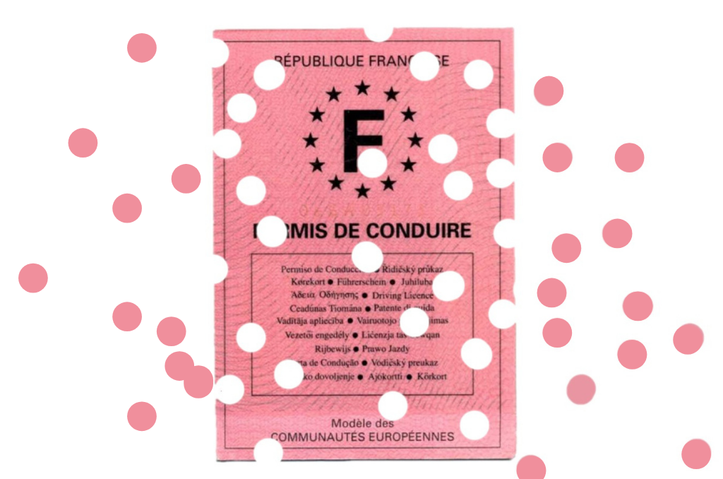 NS permis confetti
